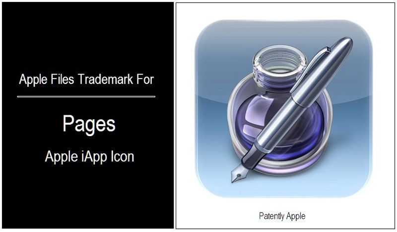 1 - COVER - PAGES IAPP ICON