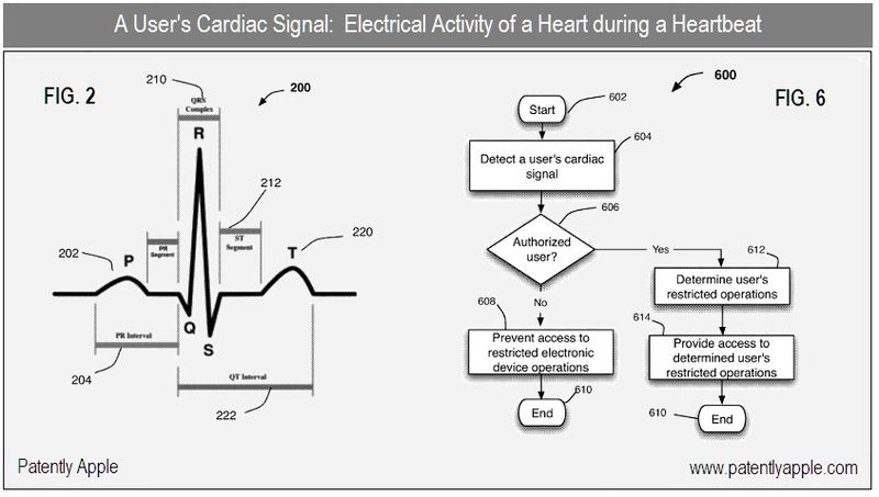3 - A user's cardiac signal