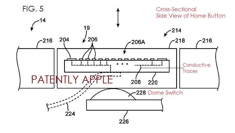 4.JPEG Apple Fingerprint Scanner - cross-sectional side view of Home Button