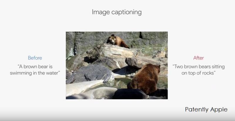 5af bear in water