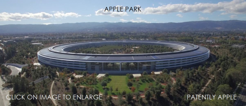 1 x cover Apple Park