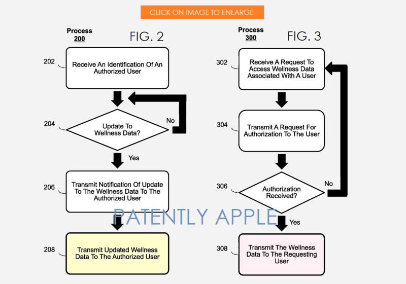 4AF 55 - FIGS 2 AND 3 WELLNESS PATENT