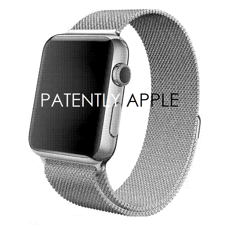6AF 55 APPLE WATCH MILANESE LOOP