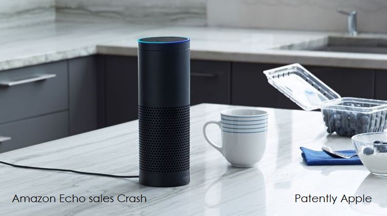 1 X Cover  Amazon Echo sales crash