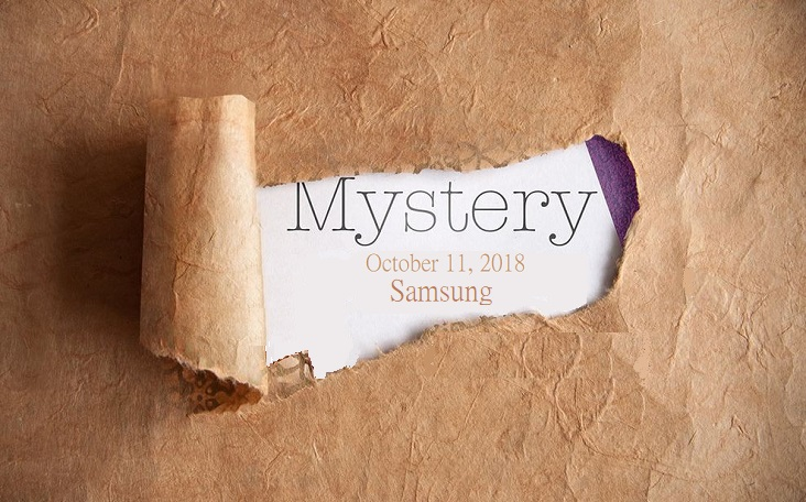 1 X 2 cover samsung mystery device
