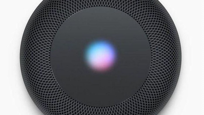 1 x cover HomePod top end view