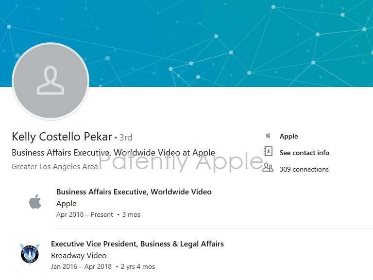 2 x LinkedIn Kelly Costello Pekar