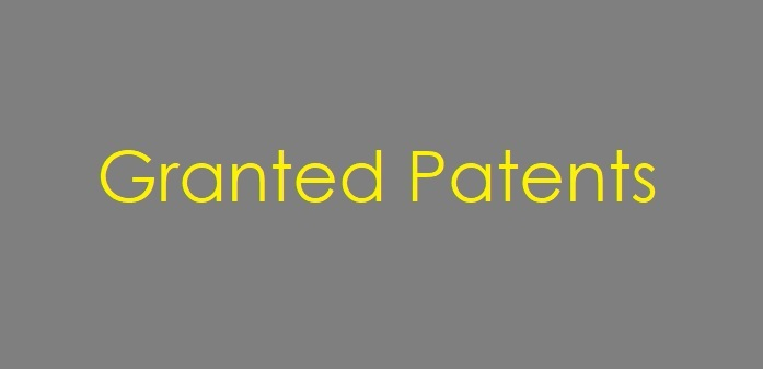 16.5 Granted Patent Cover Graphic Generic