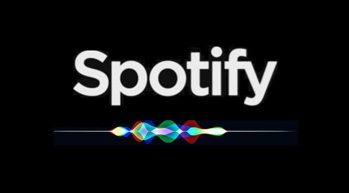 1 Cover Spotify - Siri