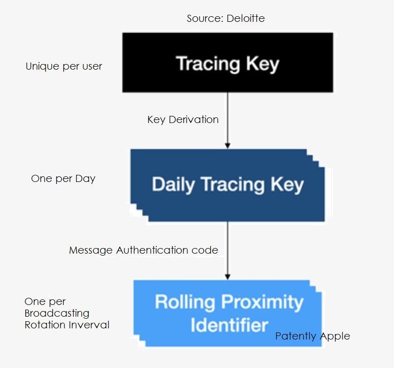 2 X Deloitte chart re Apple-Google contact tracing