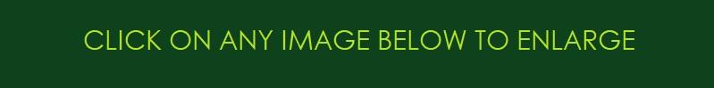 1 b DIVIDER LINE MESSAGE TO ENLARGE