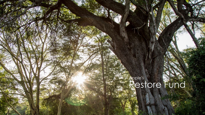 1 x cover Restore Fund