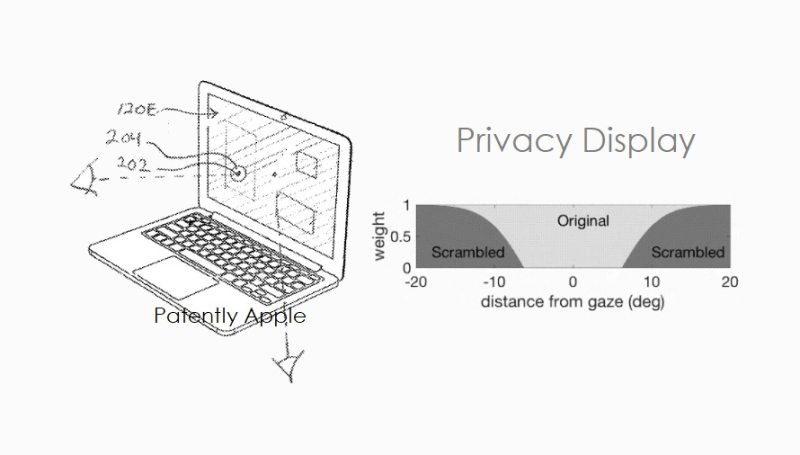 1 cover privacy display patent