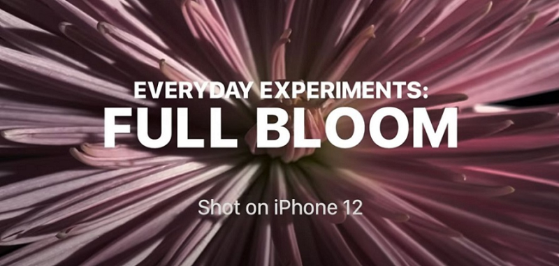 1 cover Full Bloom iPhone 12 photography how to video