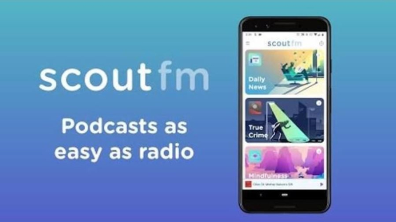 1 x Scout FM